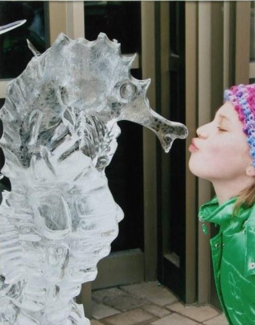 Как сделать из льда формы
