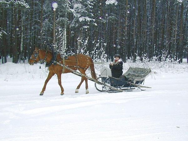 Как сделать конные сани