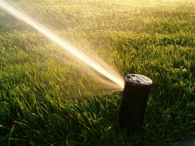 Как поливать газон