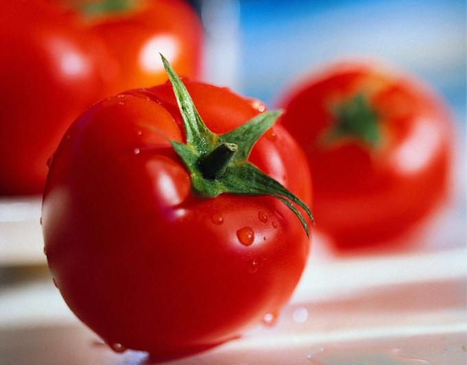 Как подготовить семена томатов на рассаду