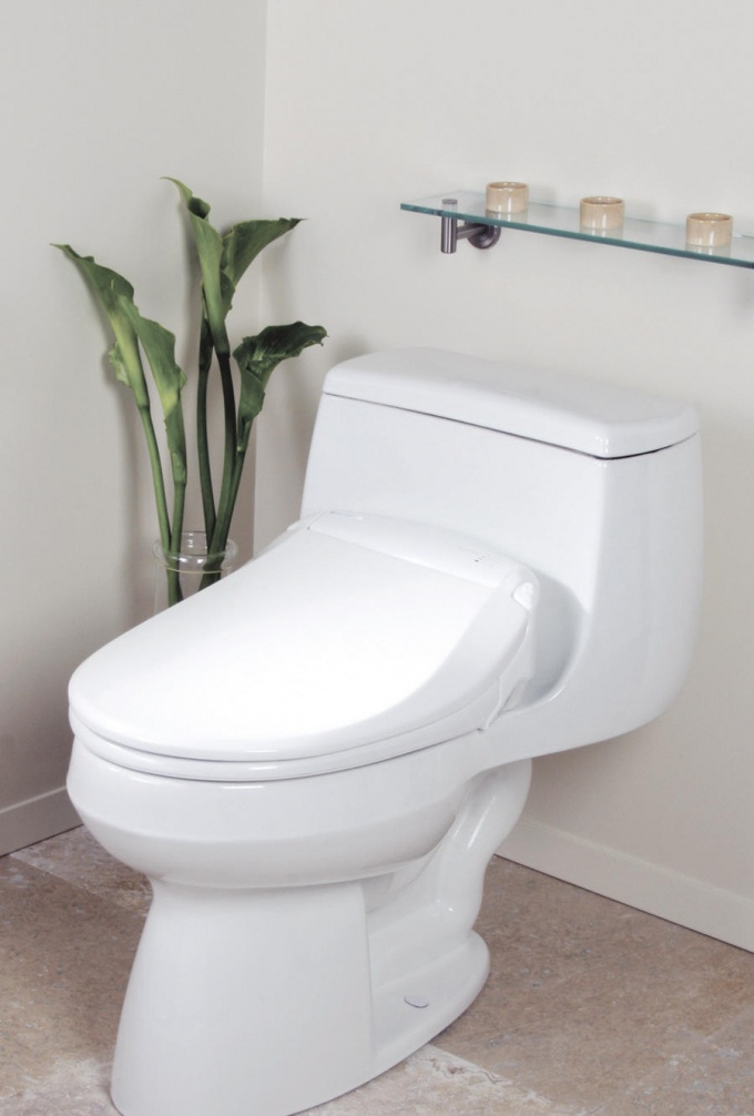 How to remove plaque on the toilet
