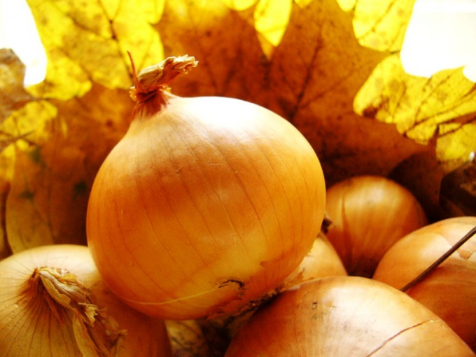 How to get a good onion harvest