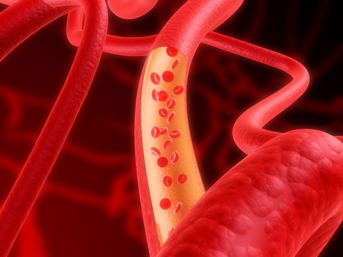 How to make the blood vessels elastic