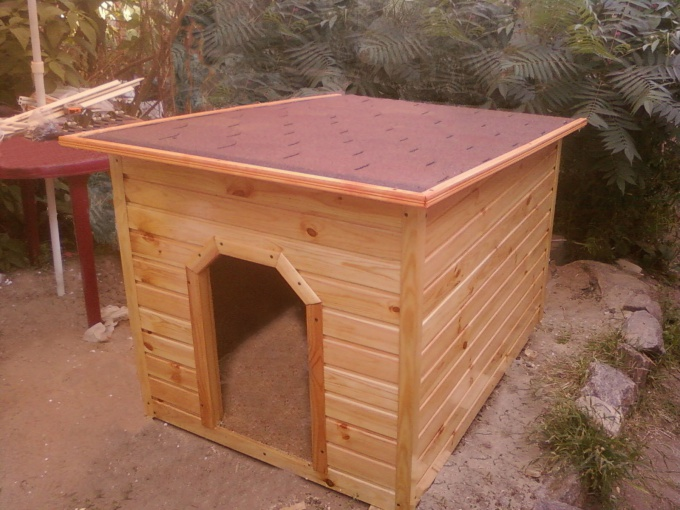 Как возвести будку для немецкой овчарки