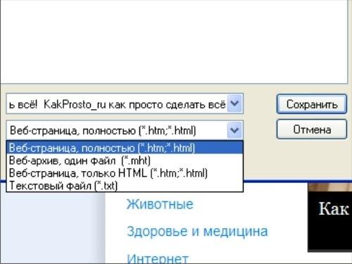 Как скопировать информацию с интернета