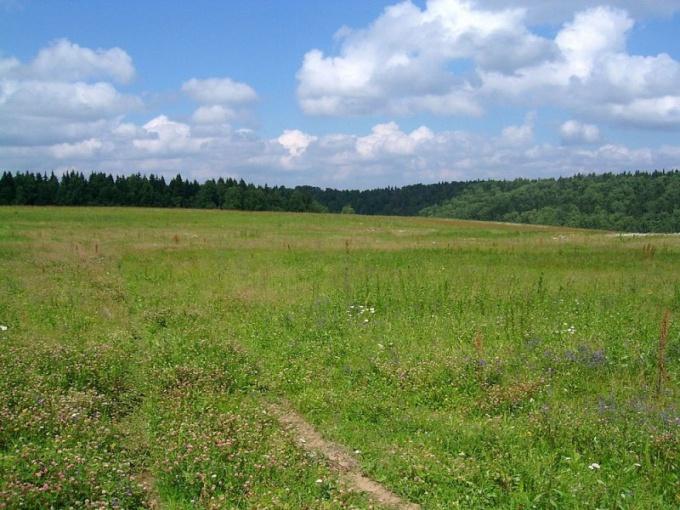Как принять к учету земельный участок