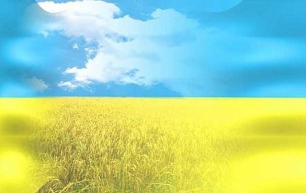 Как ввезти товар из Украины