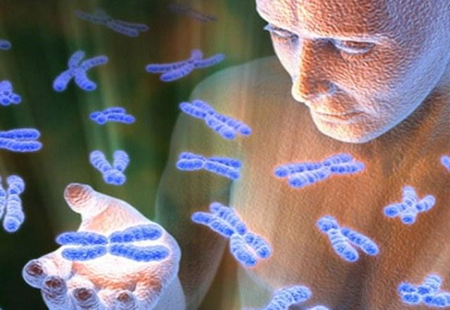 Что такое генетика