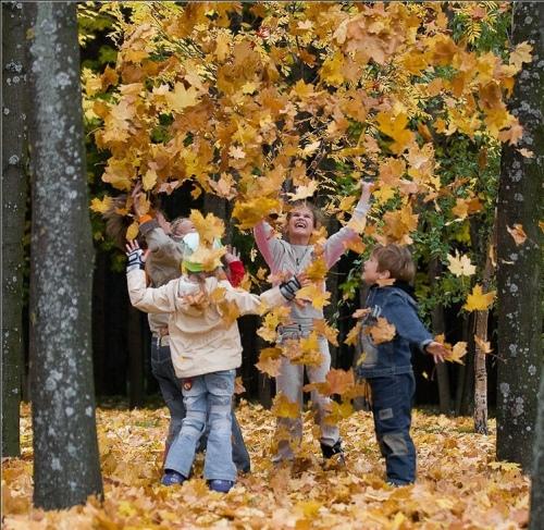Как научить детей любить природу