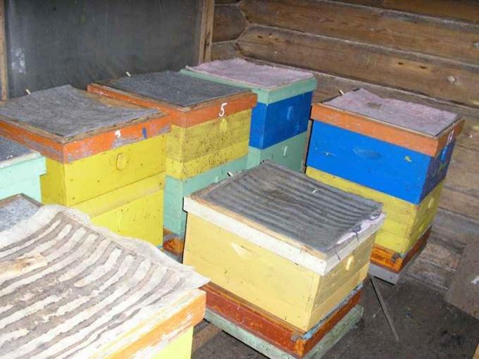 Как построить зимовник для пчел