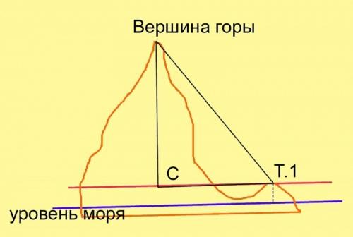 Определите вертикальные углы