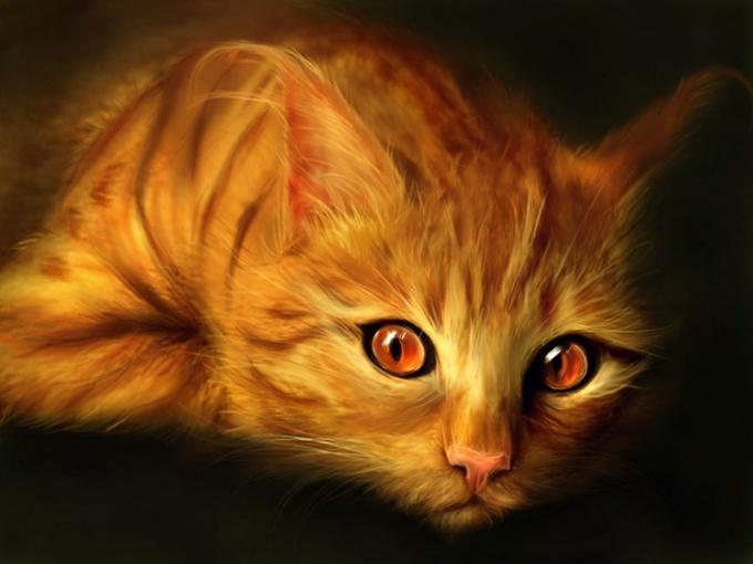 как урчат кошки