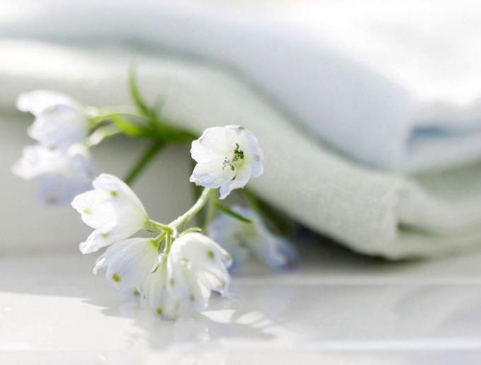 How to bleach white fabric