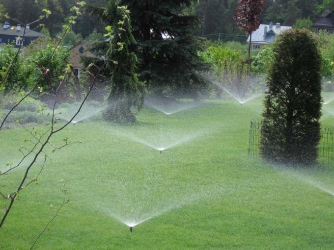 Как определить влажность почвы