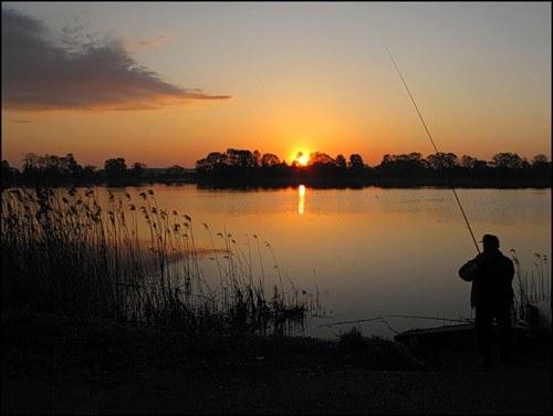 Как ловить рыбу в пруду