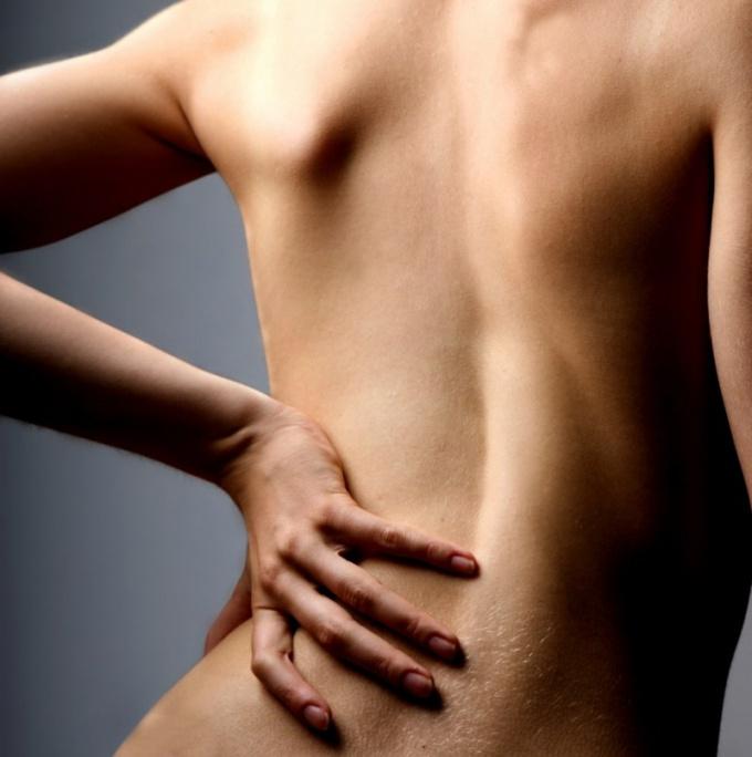 Как тренировать мышцы спины