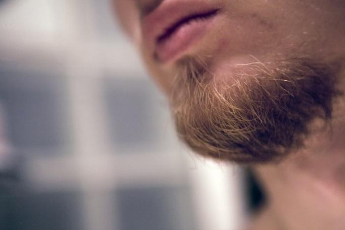 Что делать, если не растет борода