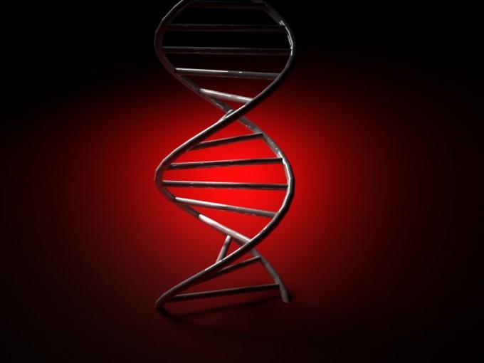 Как сдать анализ на ДНК