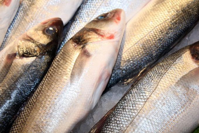 Как приготовить рыбное суфле