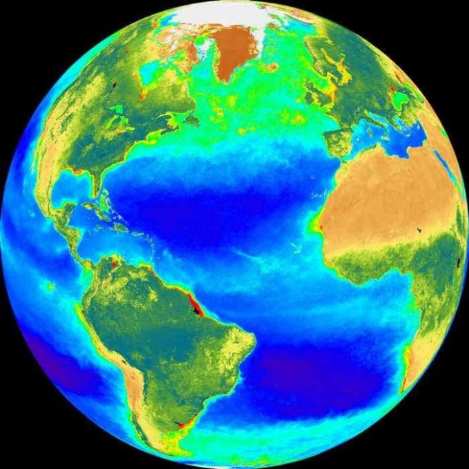 Что такое биосфера в современной экологии