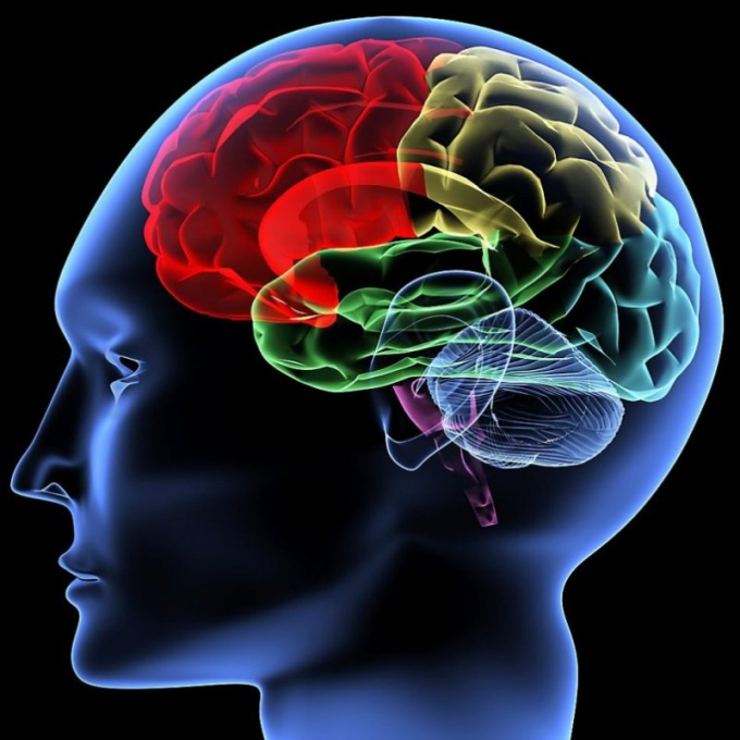 How to develop long-term memory