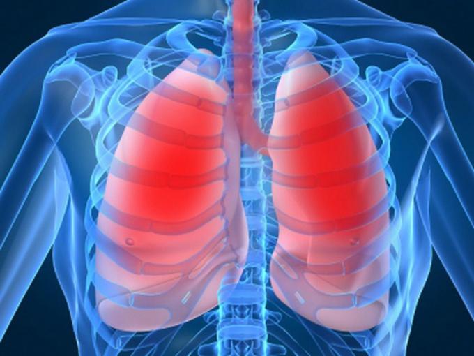 Что такое диафрагма