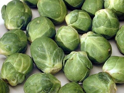 Как вырастить брюсельскую капусту