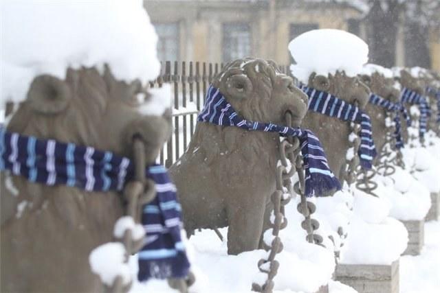 Как завязывать футбольный шарф