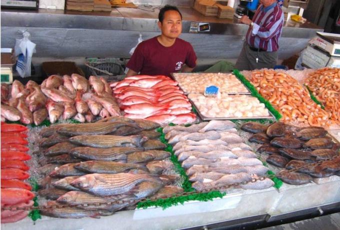 Как открыть магазин рыбы