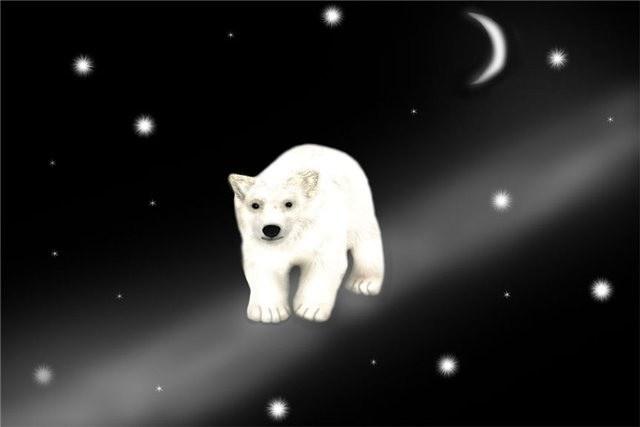 Как найти малую медведицу