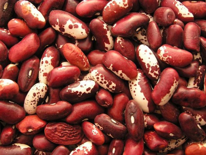 Как консервировать красную фасоль