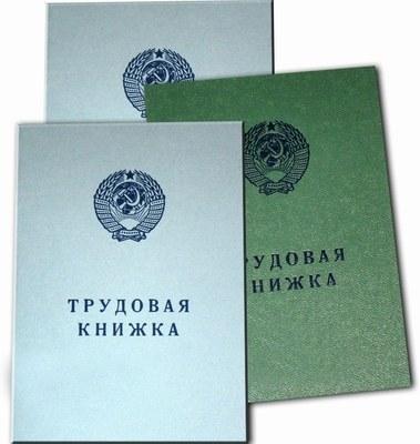 Как внести запись о переводе в трудовую книжку