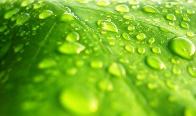 Как увеличить влажность воздуха