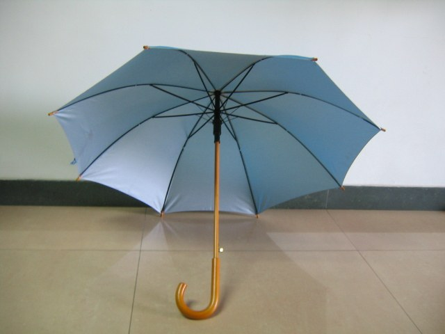 Как предпочесть зонт автомат