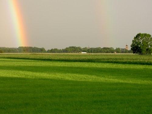 Почему радуга разноцветная