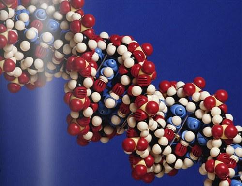 Как обнаружить число молекул в газе