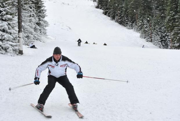 Как выбирать лыжные палки