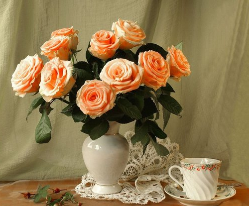 Rosy v vase