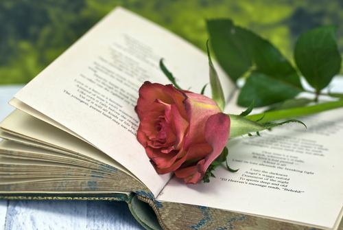 Перед началом анализа постарайтесь проникнуться лирическим настроением стихотворения