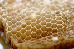 Воск получается из пчелинных сот после удаления меда