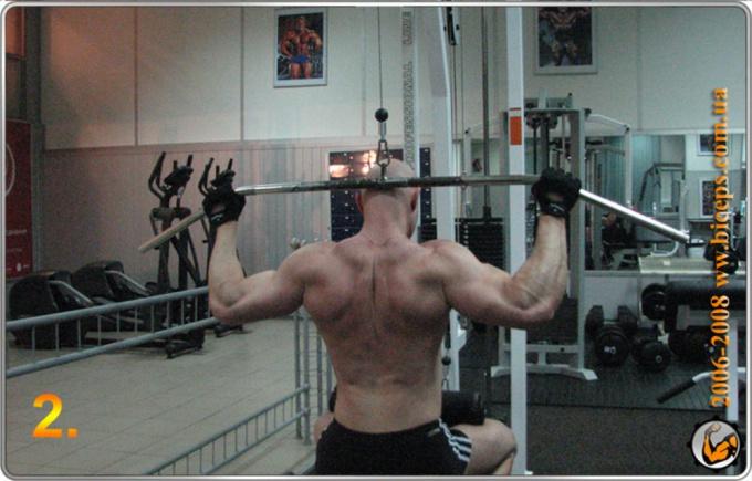 Как накачать широчайшую мышцу