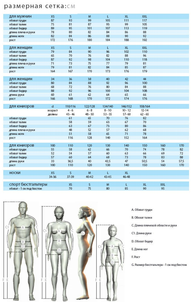 Как узнать размер одежды
