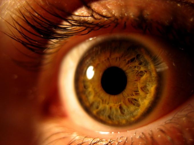 Как определить цвет глаз