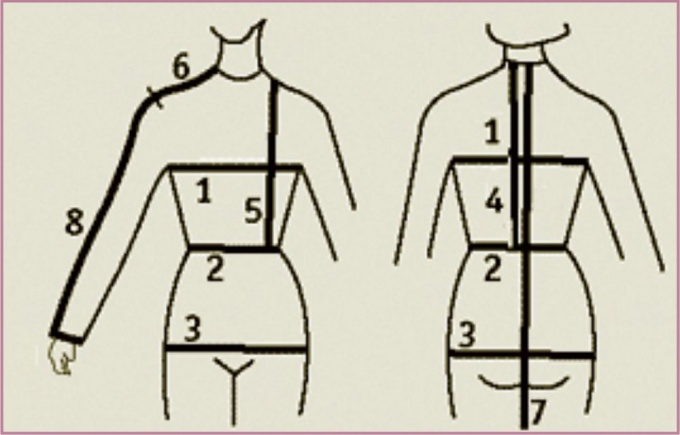 The scheme of the measurements of the female figure