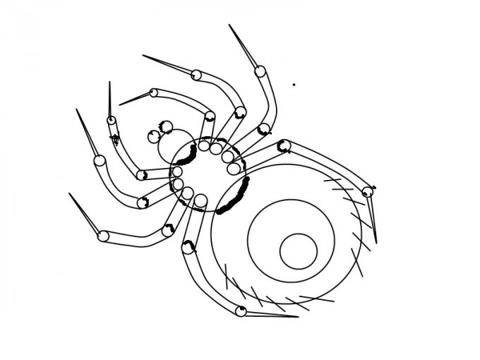 Как нарисовать <strong>паука</strong> <b>карандашом</b>