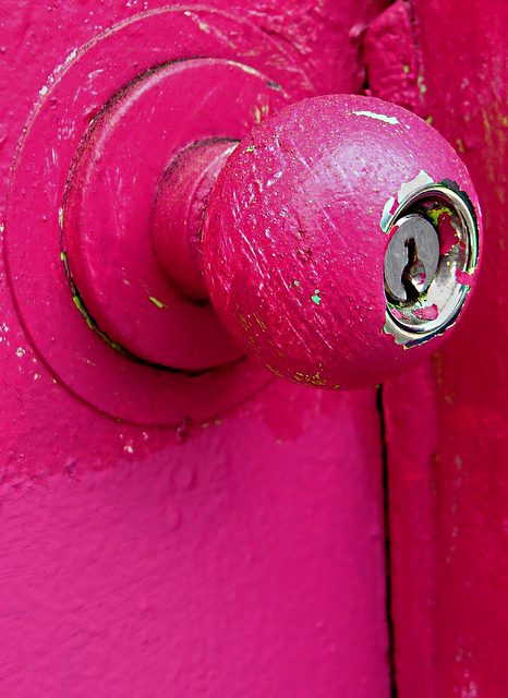 Larvae in all cylinder locks, the standard