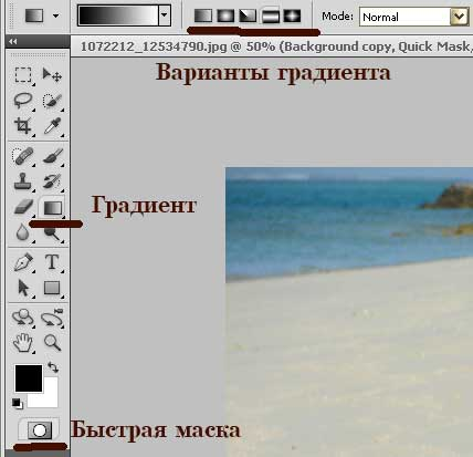 The essential tools in Photoshop