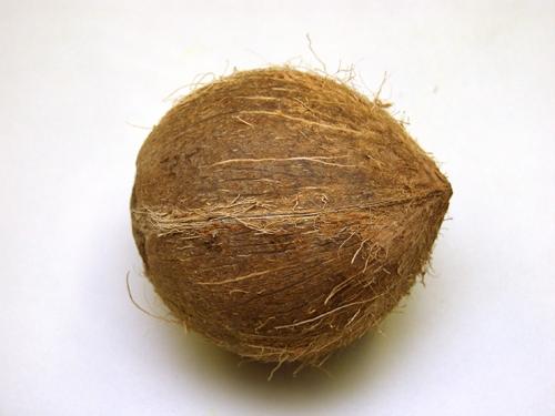 Кокосовый орех – плод кокосовой пальмы