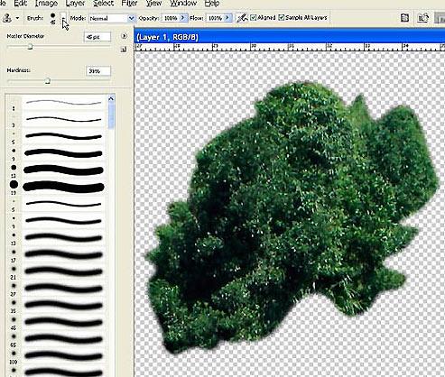 Как из картинки вырезать объект в фотошопе 10