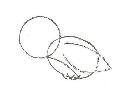 Как нарисовать <strong>воробья</strong>